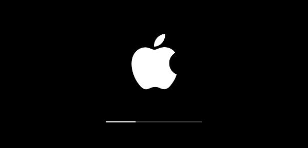 升級卡在白蘋果