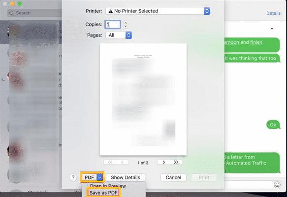 保存至 PDF 格式